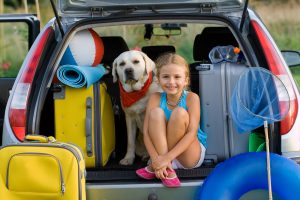 Dogs may suffer motion sickness much like children do